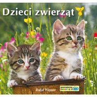 Książki dla dzieci, Dzieci zwierząt. Poznajemy zwierzęta (opr. kartonowa)